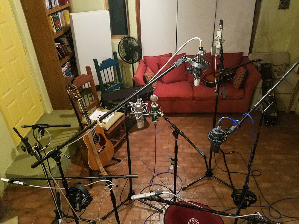 A slew of Taos Recording Microphones